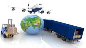 Moving To India Service Portfolio